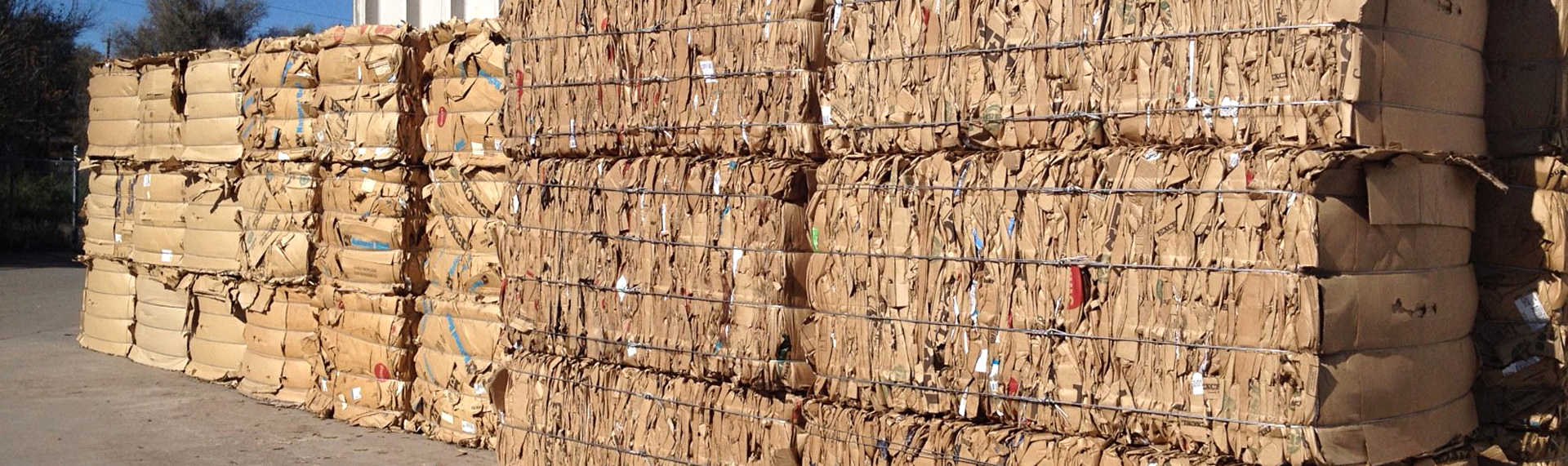 Cardboard stacked in bales